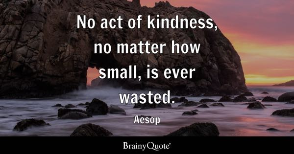 No act of kindness, no matter how small, is ever wasted. - Aesop