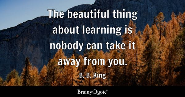 The beautiful thing about learning is nobody can take it away from you. - B. B. King