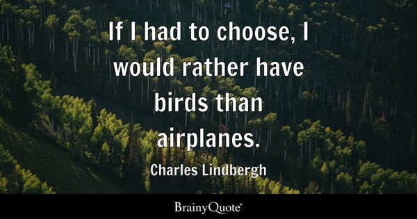If I had to choose, I would rather have birds than airplanes. - Charles Lindbergh