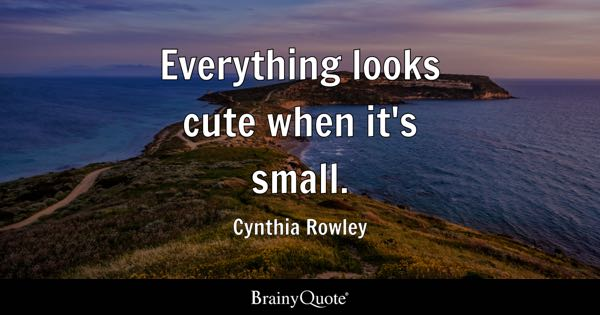 Everything looks cute when it's small. - Cynthia Rowley