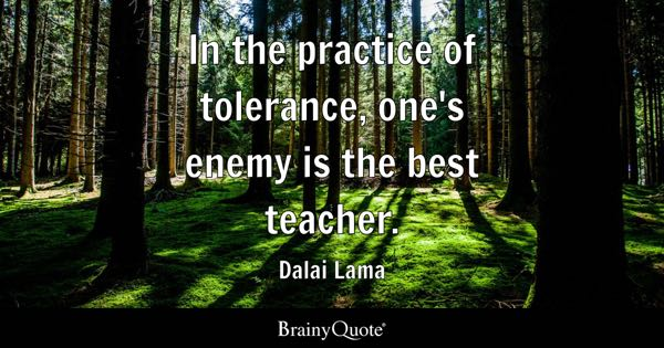 In the practice of tolerance, one's enemy is the best teacher. - Dalai Lama
