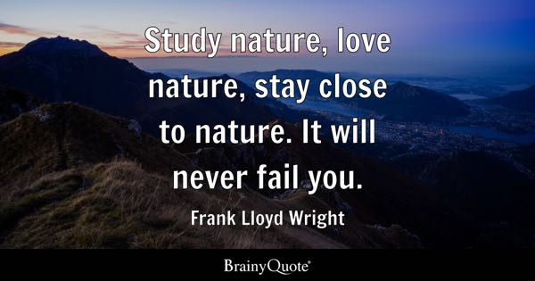 Study nature, love nature, stay close to nature. It will never fail you. - Frank Lloyd Wright