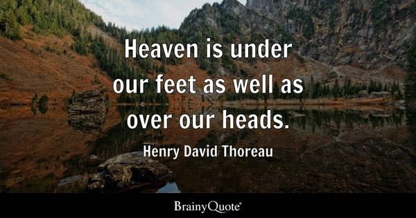 Heaven is under our feet as well as over our heads. - Henry David Thoreau