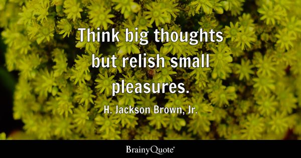 Think big thoughts but relish small pleasures. - H. Jackson Brown, Jr.