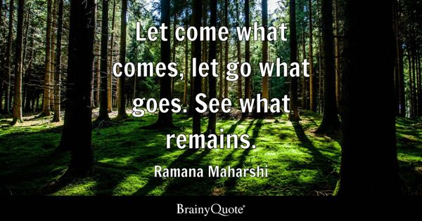 Let come what comes, let go what goes. See what remains. - Ramana Maharshi