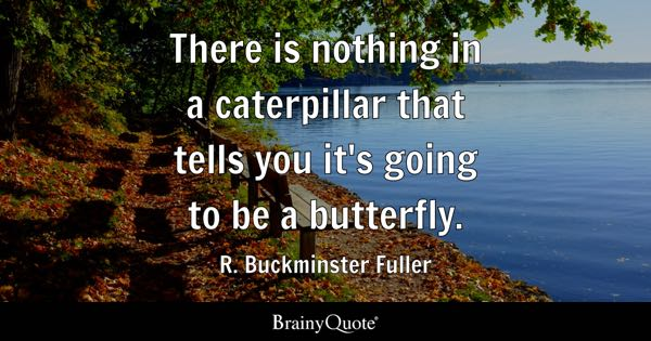There is nothing in a caterpillar that tells you it's going to be a butterfly. - R. Buckminster Fuller