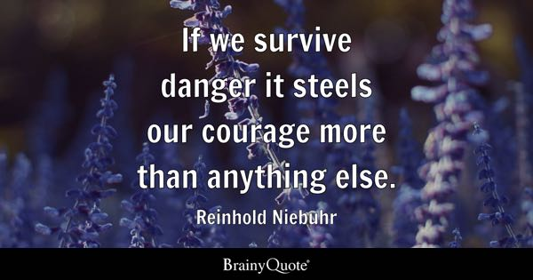 If we survive danger it steels our courage more than anything else. - Reinhold Niebuhr