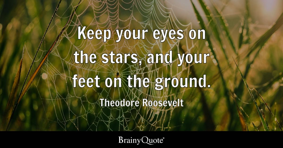 Keep your eyes on the stars, and your feet on the ground. - Theodore Roosevelt
