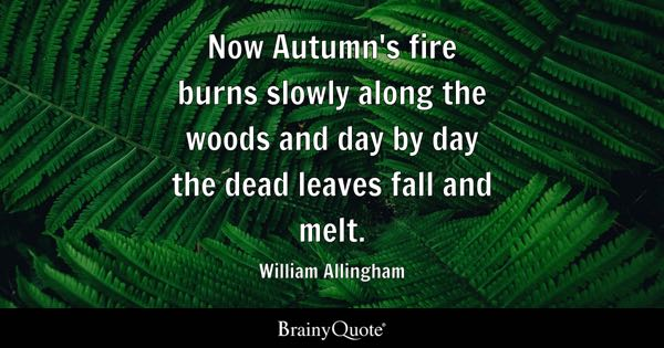 Now Autumn's fire burns slowly along the woods and day by day the dead leaves fall and melt. - William Allingham